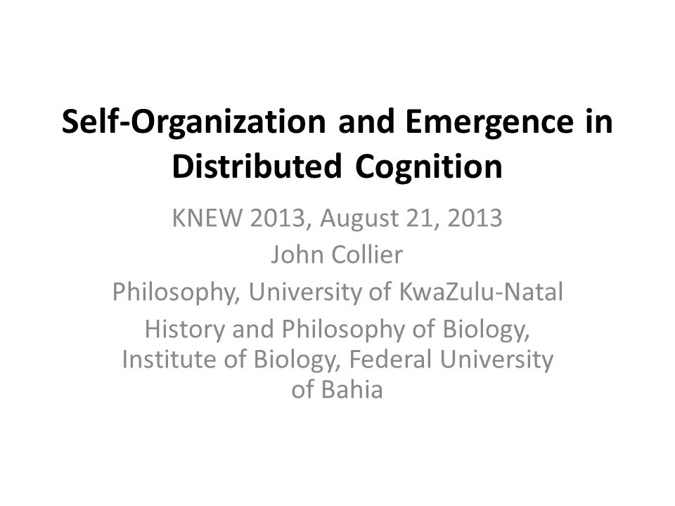 Self-Organization and Emergence in Distributed Cognition