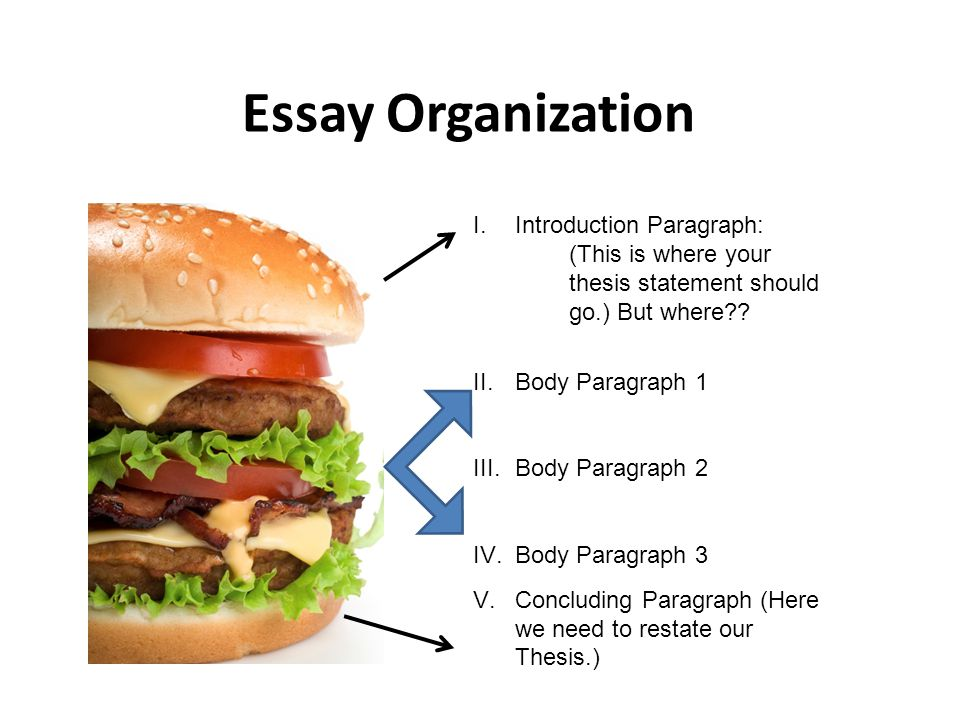 Essay Organization Introduction Paragraph:
