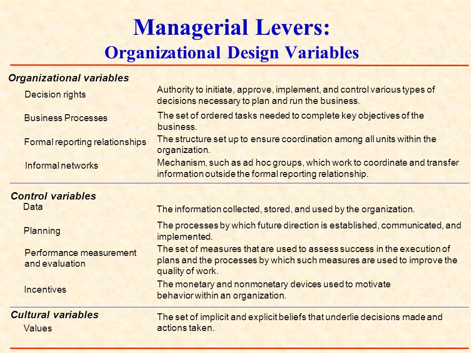 Managerial Levers: Organizational Design Variables