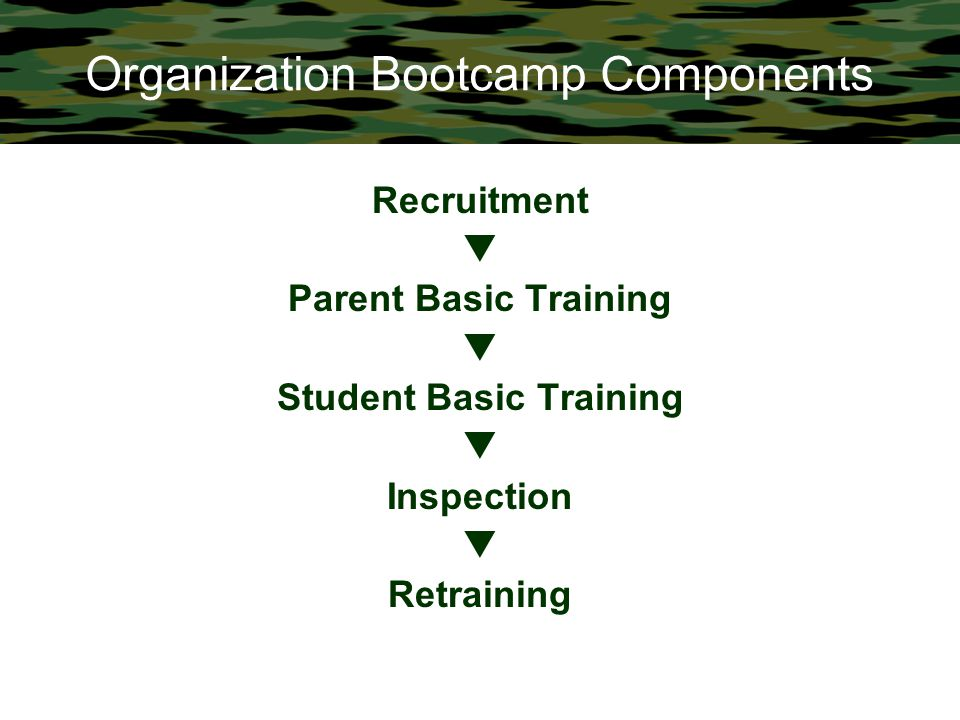 Organization Bootcamp Components