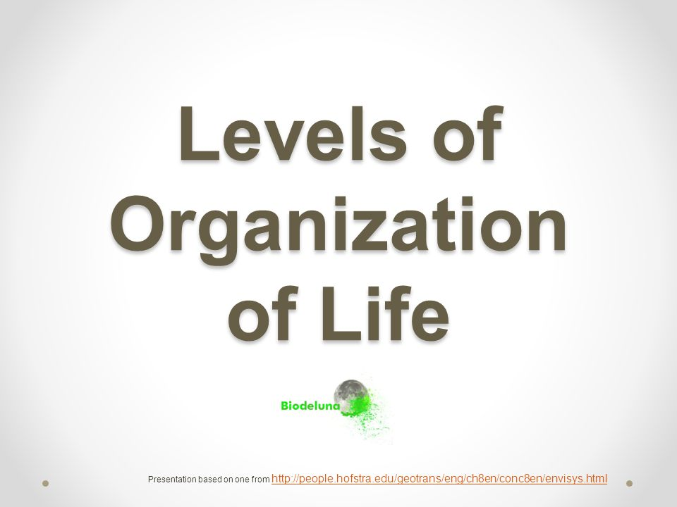 Levels of Organization of Life