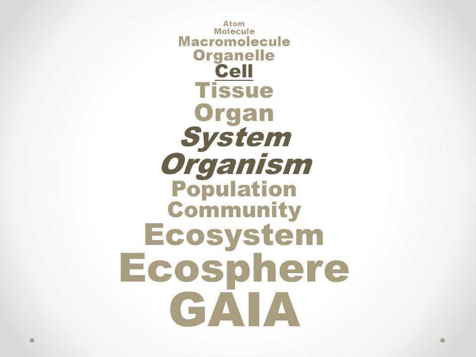 GAIA Ecosphere Ecosystem Organism System Organ Tissue Population