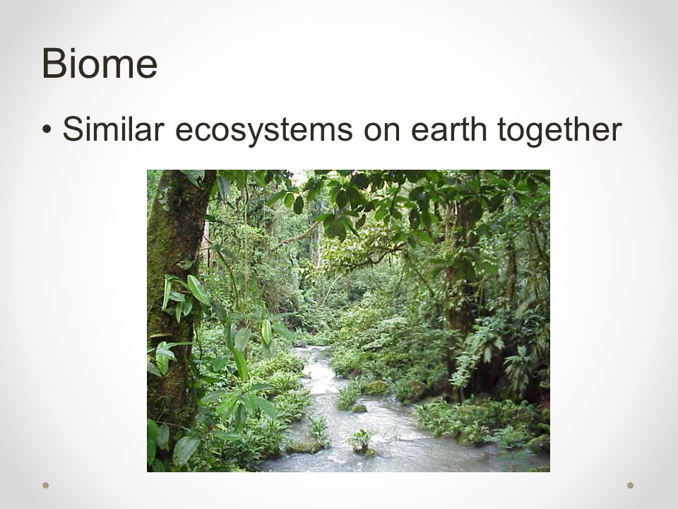 Biome Similar ecosystems on earth together
