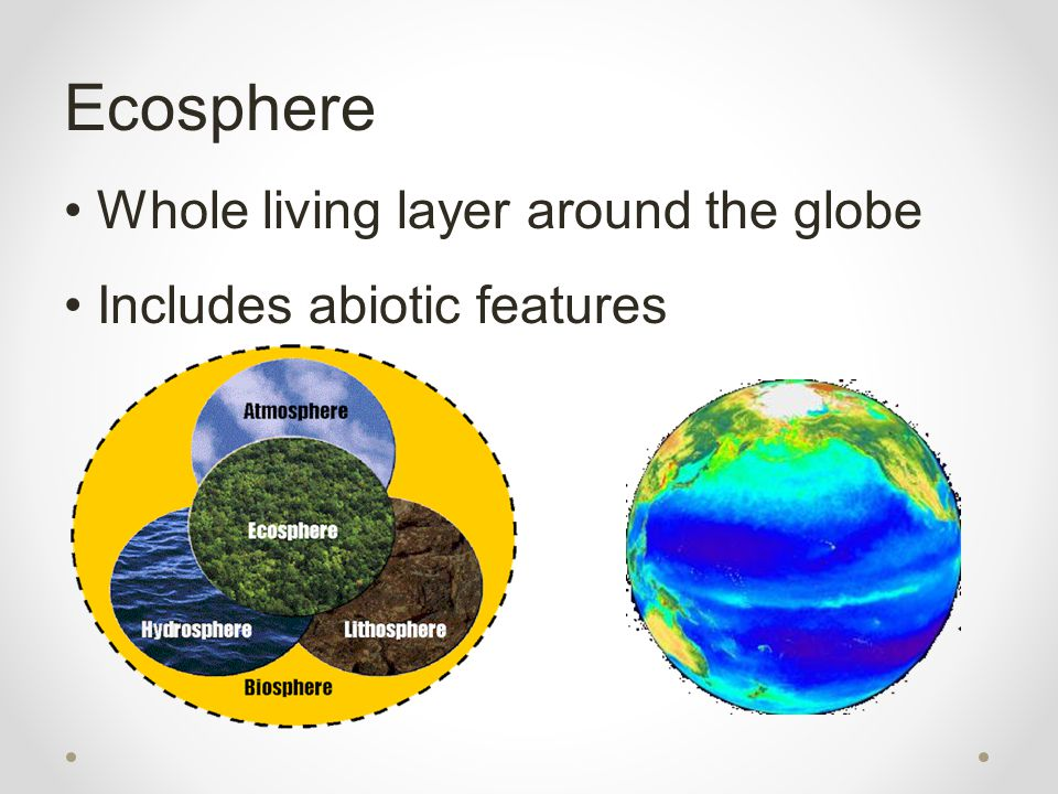 Ecosphere Whole living layer around the globe