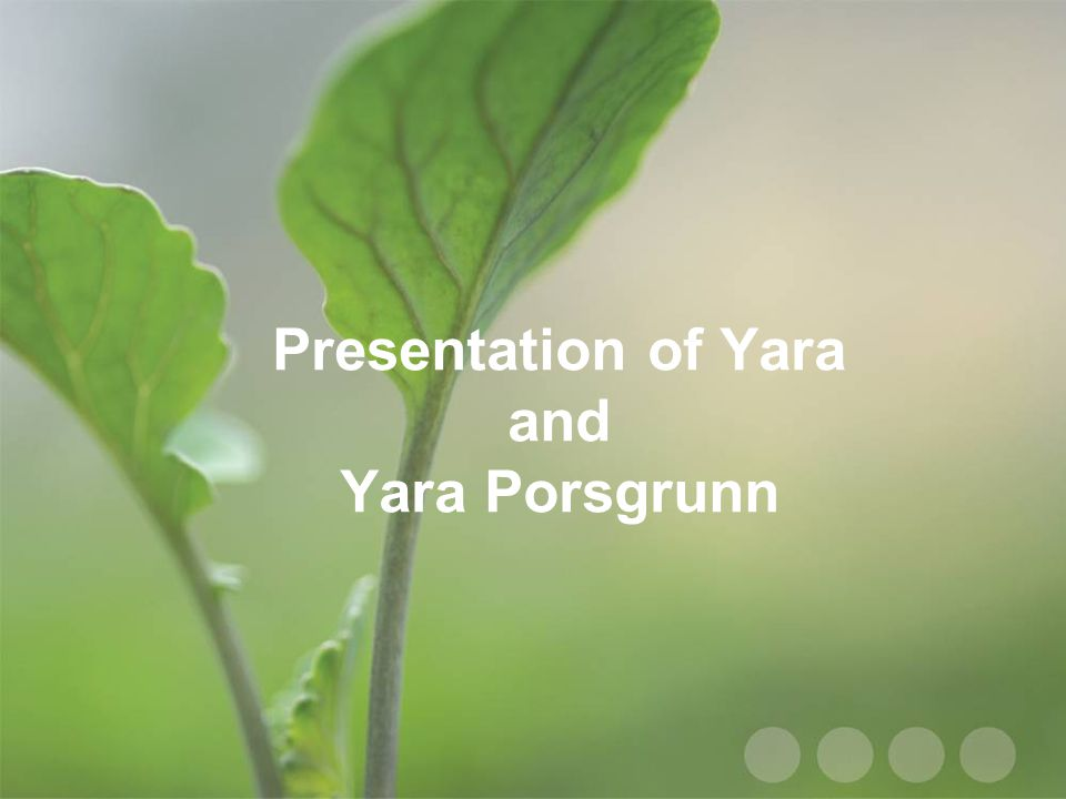 Presentation of Yara and Yara Porsgrunn