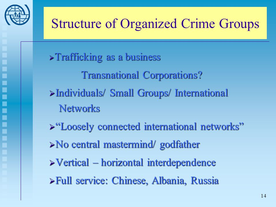 Structure of Organized Crime Groups
