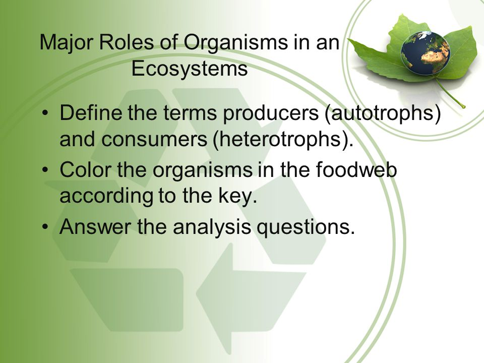 Major Roles of Organisms in an Ecosystems