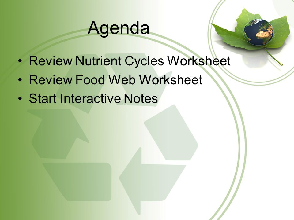 Agenda Review Nutrient Cycles Worksheet Review Food Web Worksheet