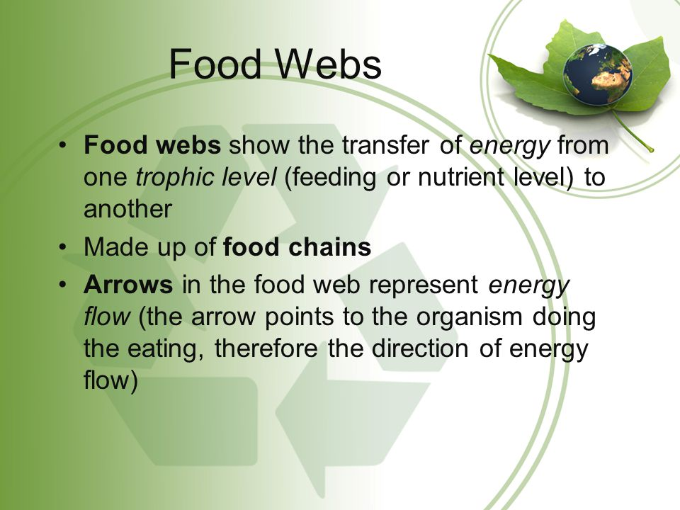Food Webs Food webs show the transfer of energy from one trophic level (feeding or nutrient level) to another.