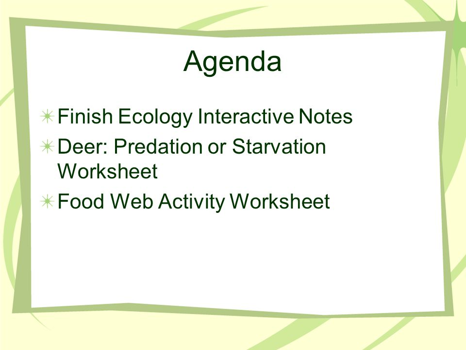 Agenda Finish Ecology Interactive Notes
