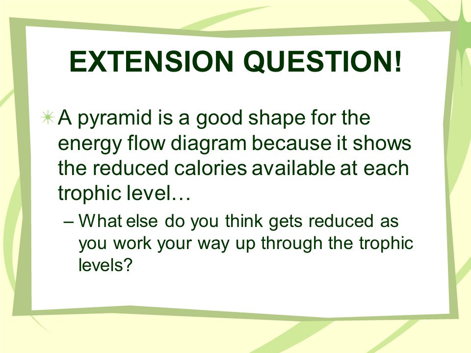 EXTENSION QUESTION! A pyramid is a good shape for the energy flow diagram because it shows the reduced calories available at each trophic level…