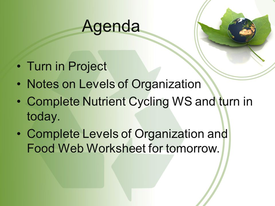 Agenda Turn in Project Notes on Levels of Organization