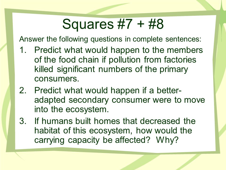 Squares #7 + #8 Answer the following questions in complete sentences: