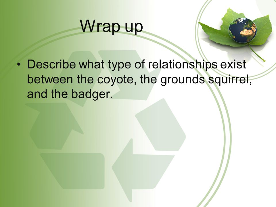 Wrap up Describe what type of relationships exist between the coyote, the grounds squirrel, and the badger.