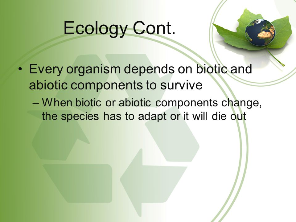 Ecology Cont. Every organism depends on biotic and abiotic components to survive.