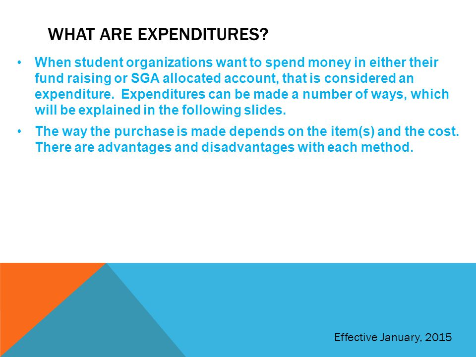 What are expenditures