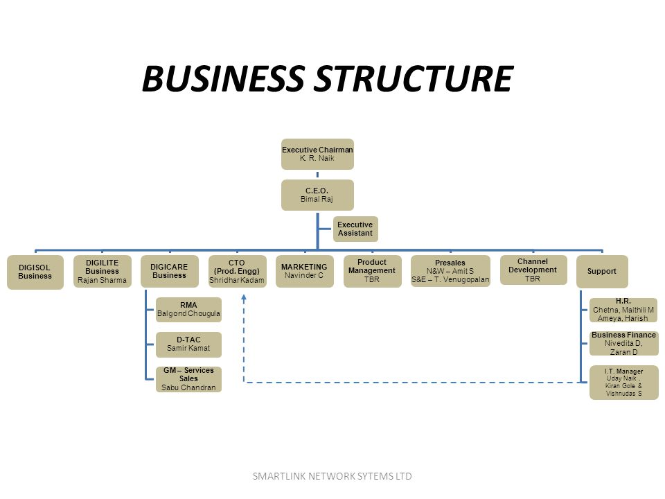 BUSINESS STRUCTURE SMARTLINK NETWORK SYTEMS LTD Executive Chairman
