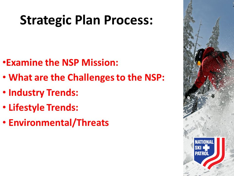 Strategic Plan Process: