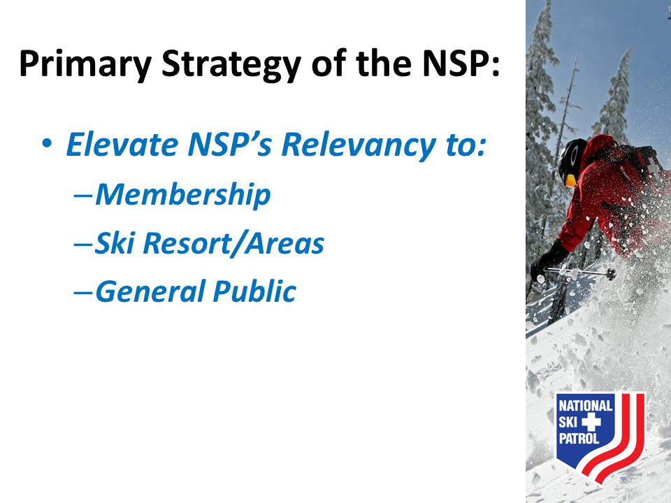 Primary Strategy of the NSP: