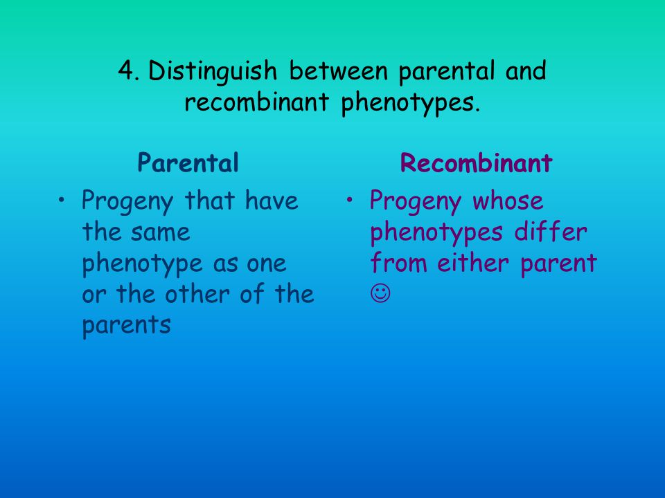 4. Distinguish between parental and recombinant phenotypes.
