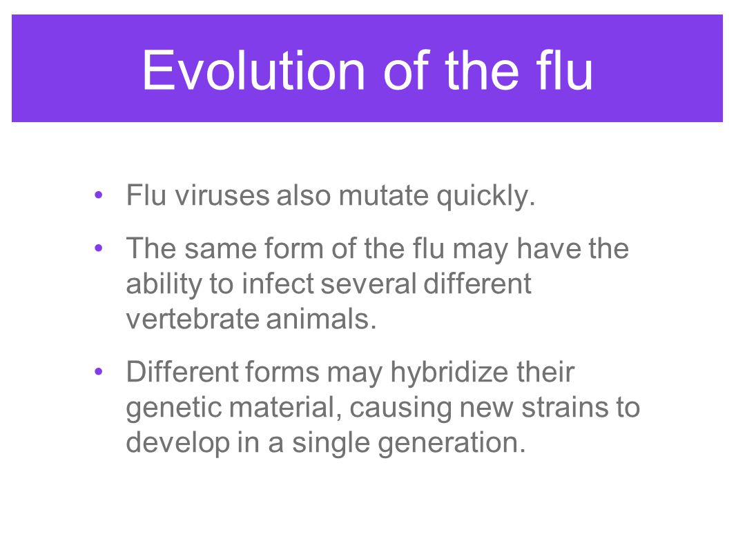 Evolution of the flu Flu viruses also mutate quickly.