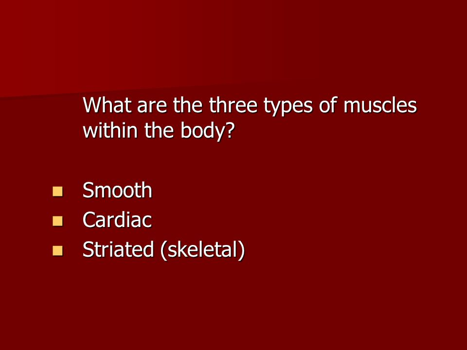 What are the three types of muscles within the body