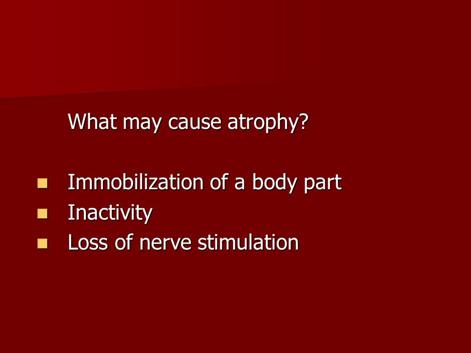 What may cause atrophy Immobilization of a body part Inactivity Loss of nerve stimulation