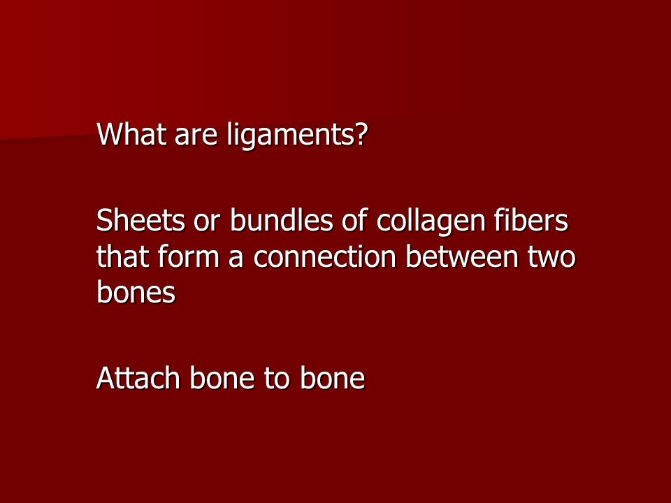 What are ligaments. Sheets or bundles of collagen fibers that form a connection between two bones.