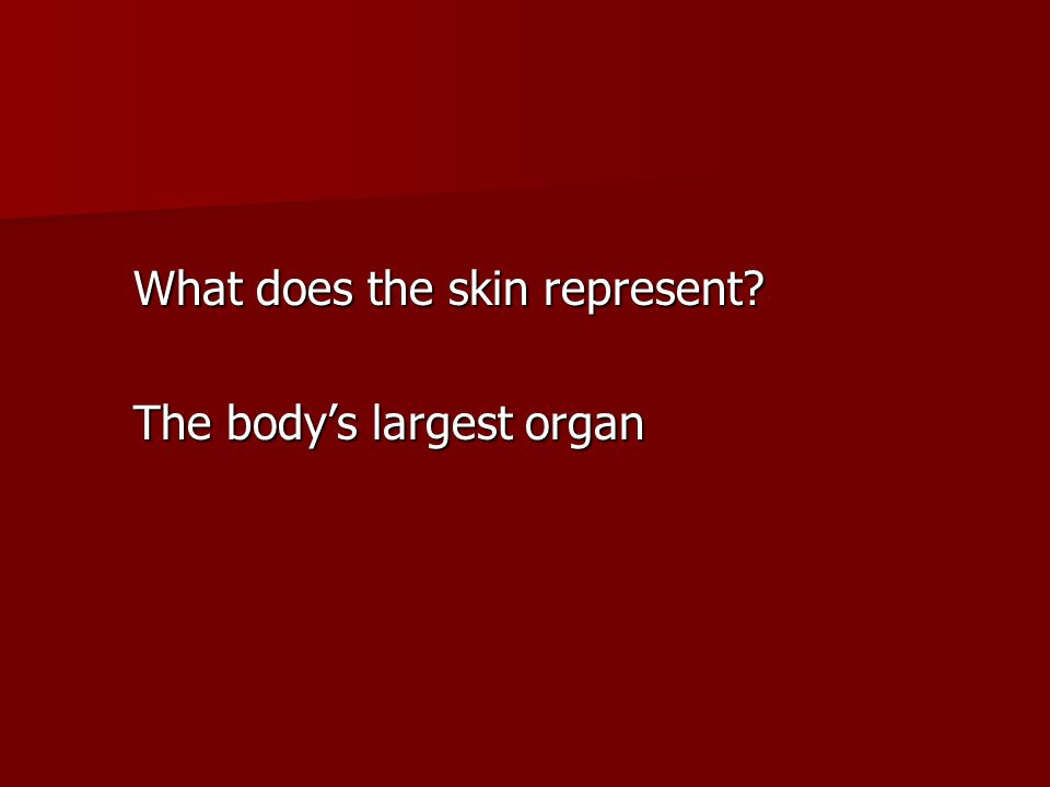 What does the skin represent