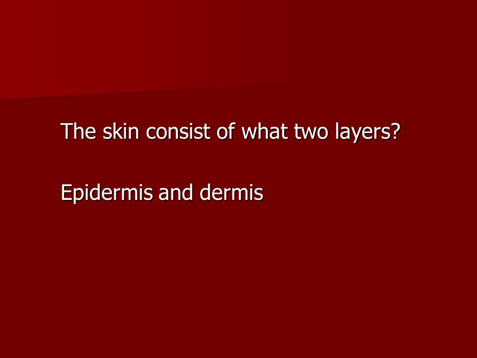The skin consist of what two layers