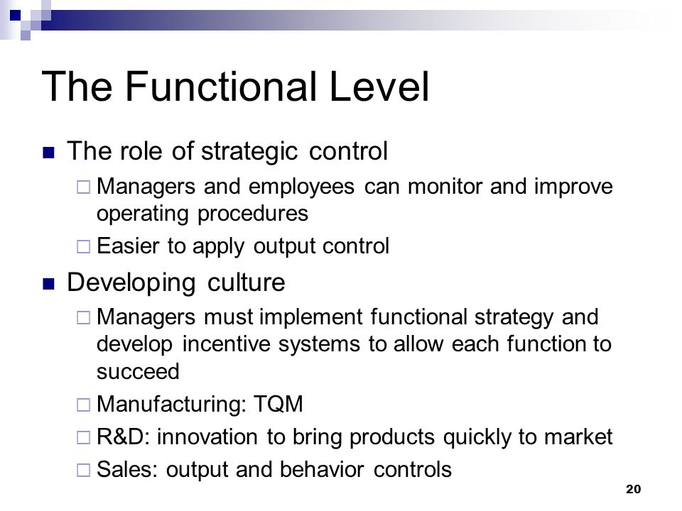 The Functional Level The role of strategic control Developing culture