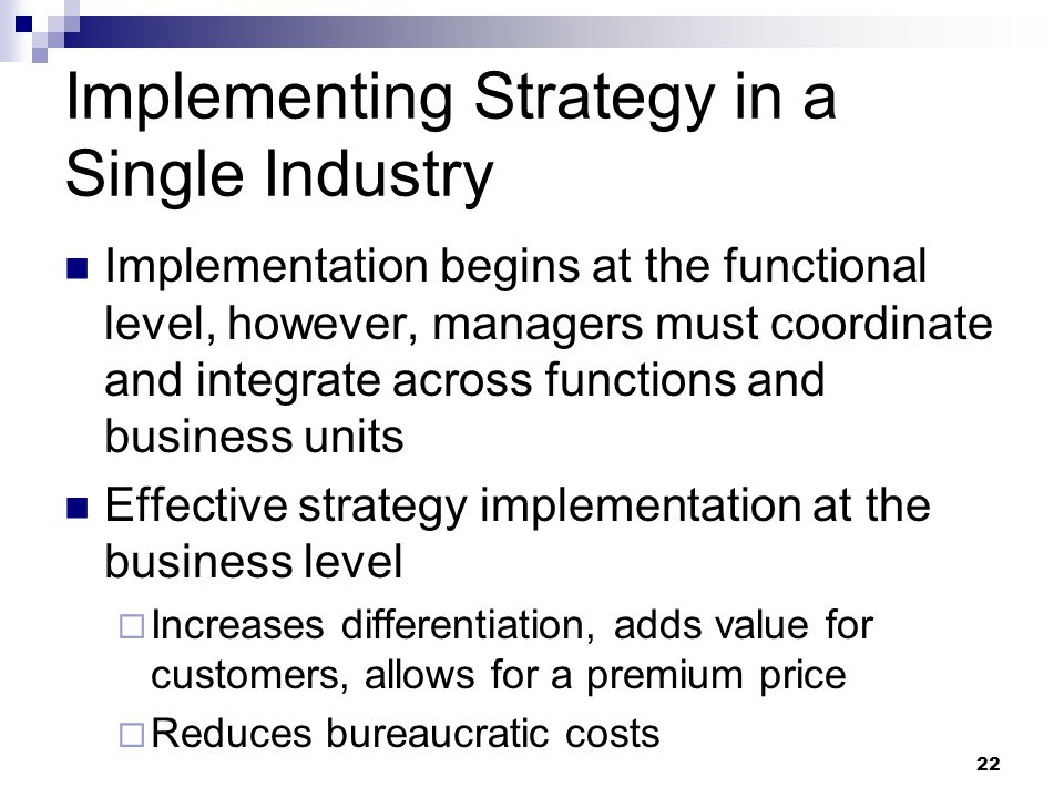 Implementing Strategy in a Single Industry