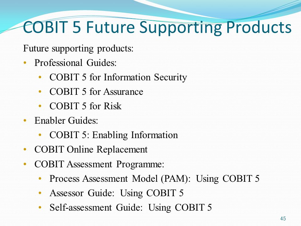 COBIT 5 Future Supporting Products