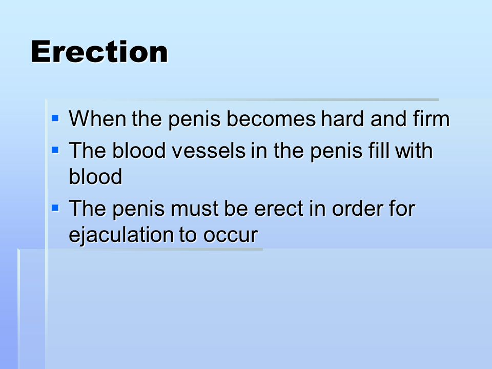 Erection When the penis becomes hard and firm