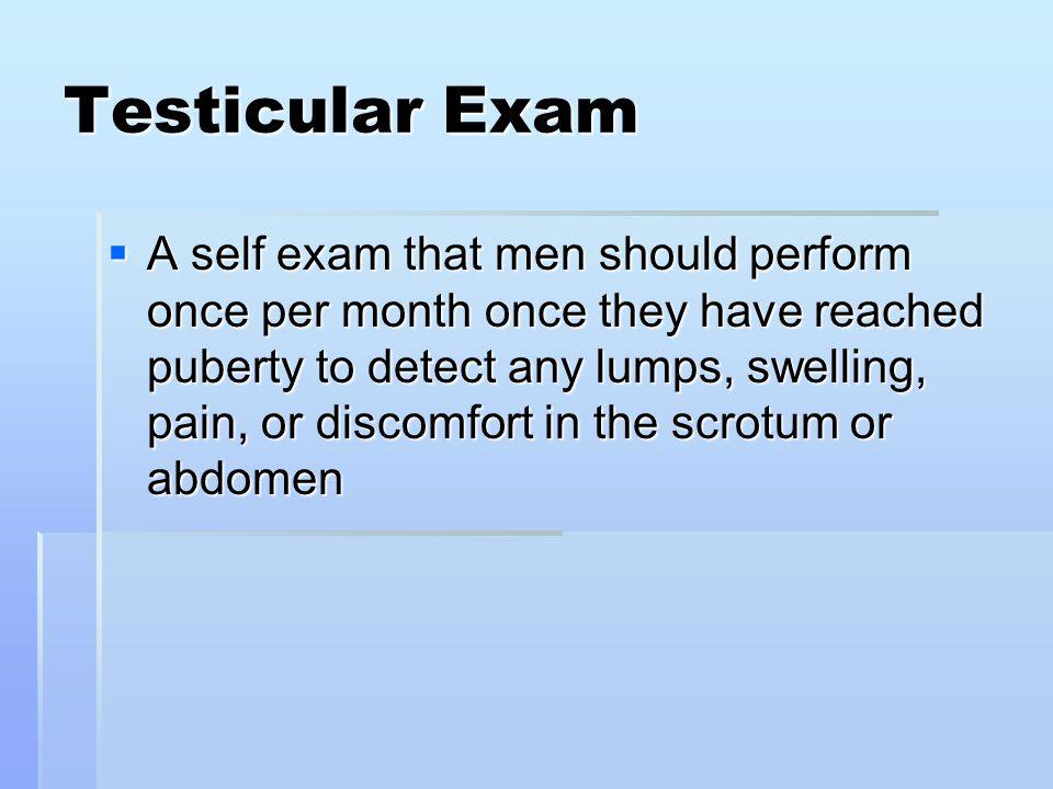 Testicular Exam