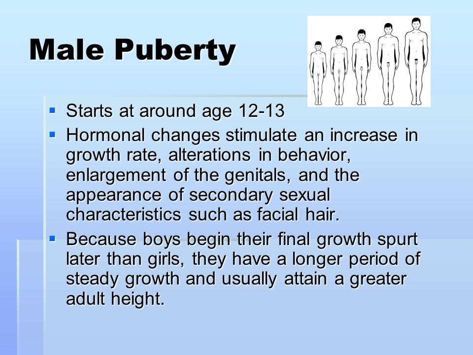 Male Puberty Starts at around age 12-13