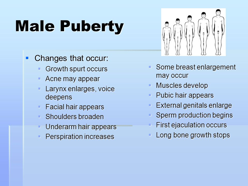 Male Puberty Changes that occur: Growth spurt occurs