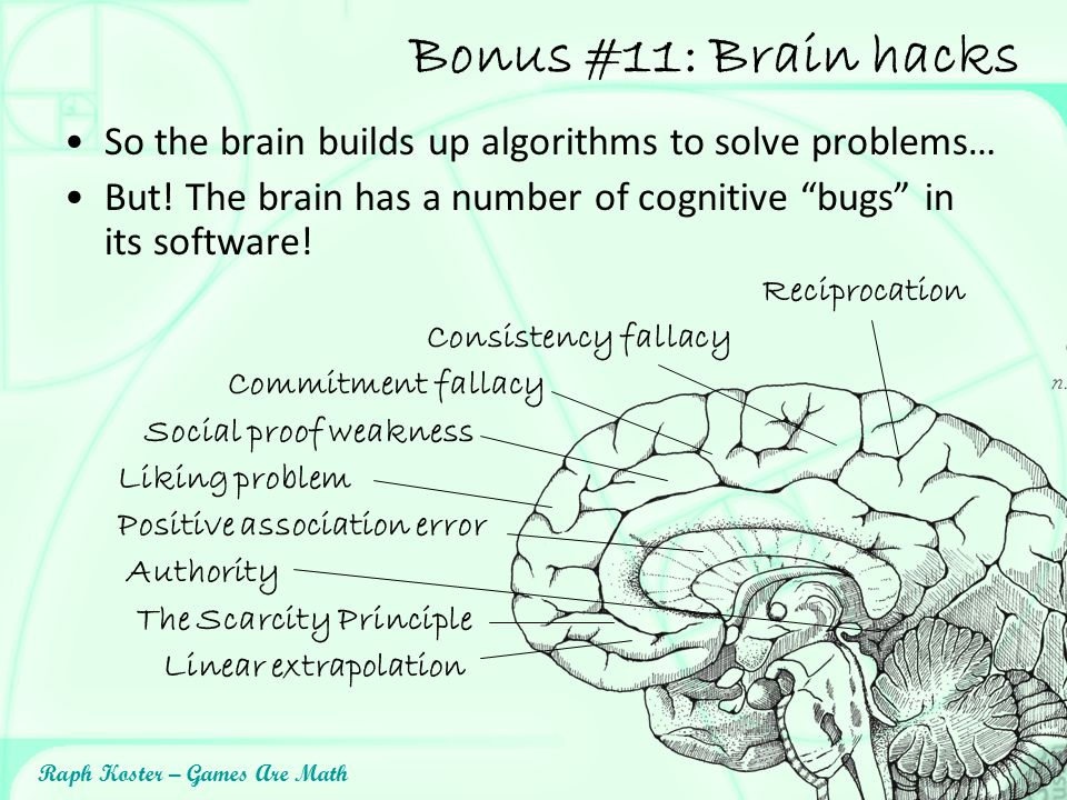 Bonus #11: Brain hacks So the brain builds up algorithms to solve problems… But! The brain has a number of cognitive bugs in its software!