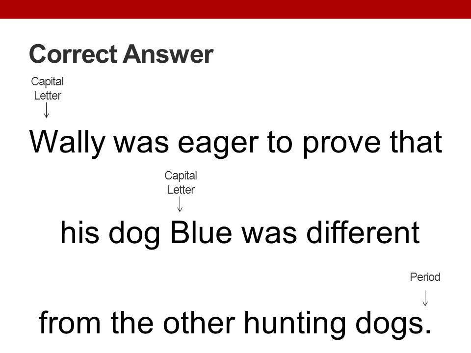 Correct Answer Capital Letter. Wally was eager to prove that his dog Blue was different from the other hunting dogs.