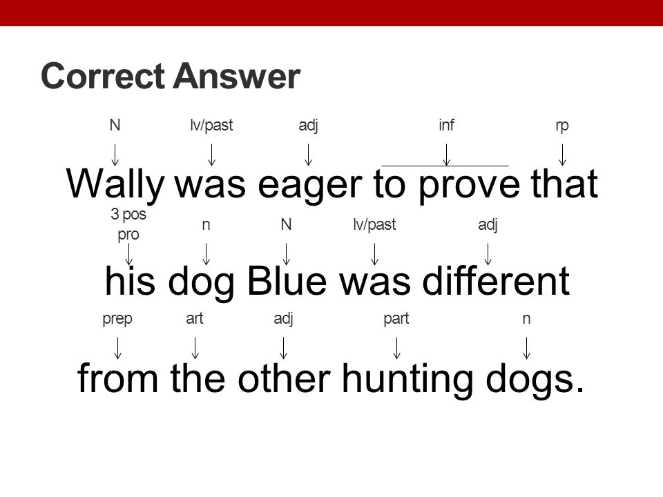 Correct Answer N. lv/past. adj. inf. rp. Wally was eager to prove that his dog Blue was different from the other hunting dogs.