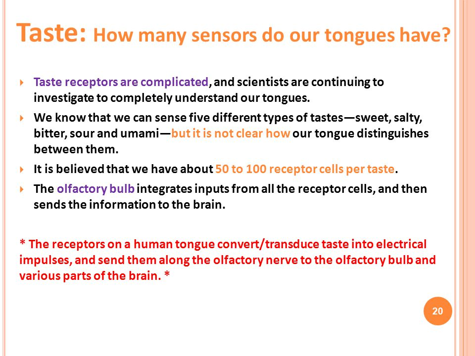 Taste: How many sensors do our tongues have
