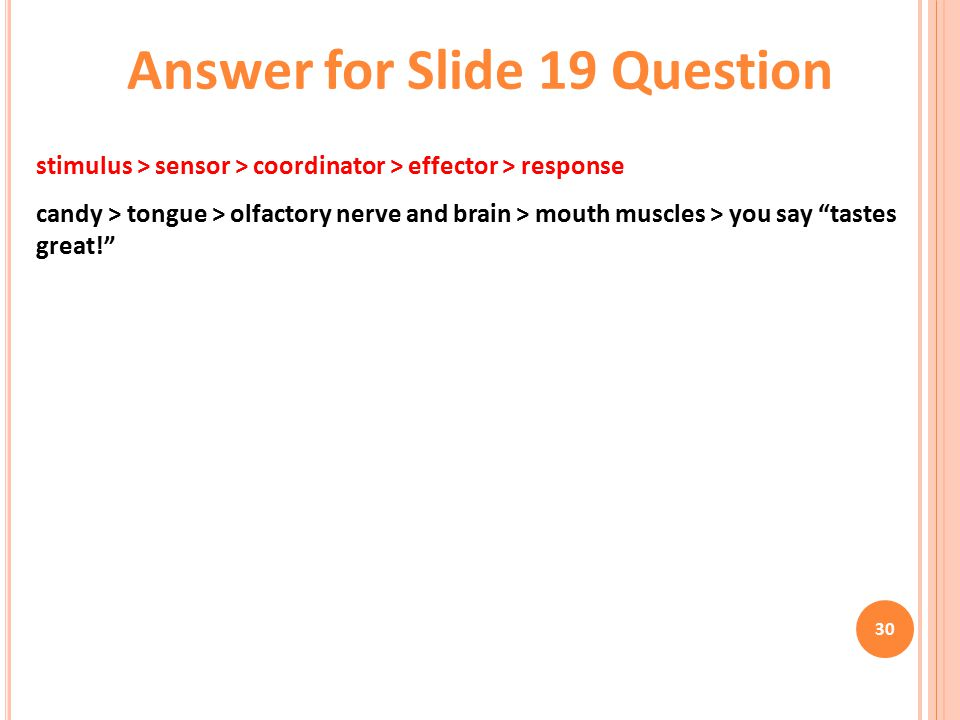 Answer for Slide 19 Question