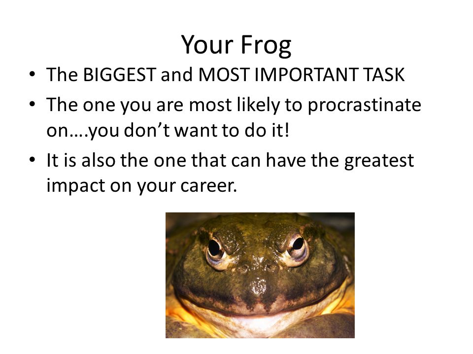 Your Frog The BIGGEST and MOST IMPORTANT TASK