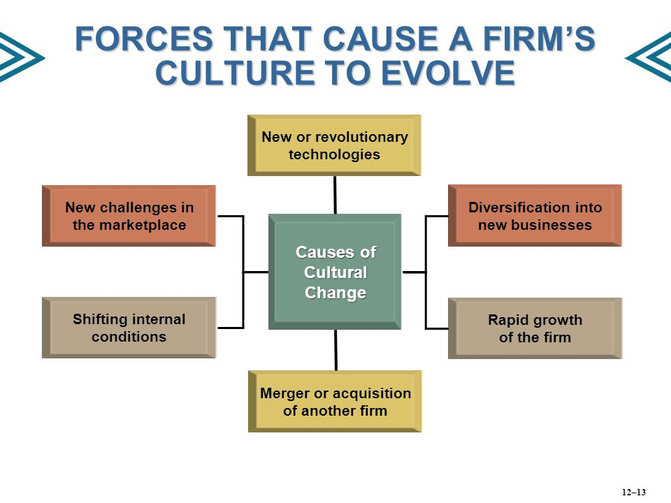 FORCES THAT CAUSE A FIRM'S CULTURE TO EVOLVE