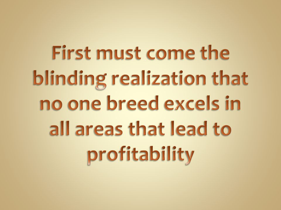 First must come the blinding realization that no one breed excels in all areas that lead to profitability