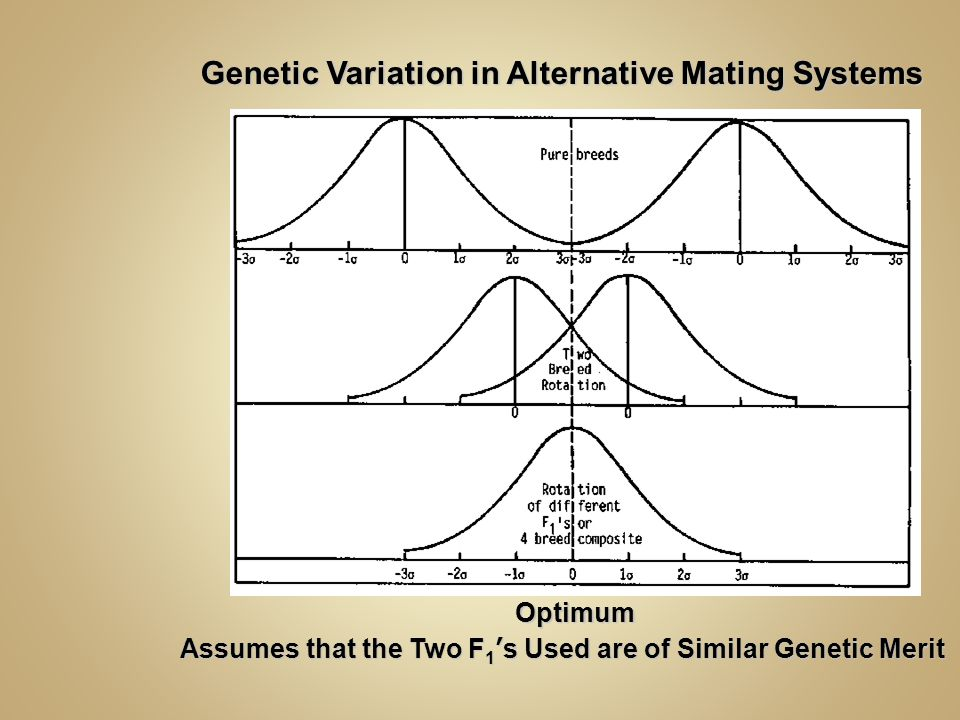 Genetic Variation in Alternative Mating Systems