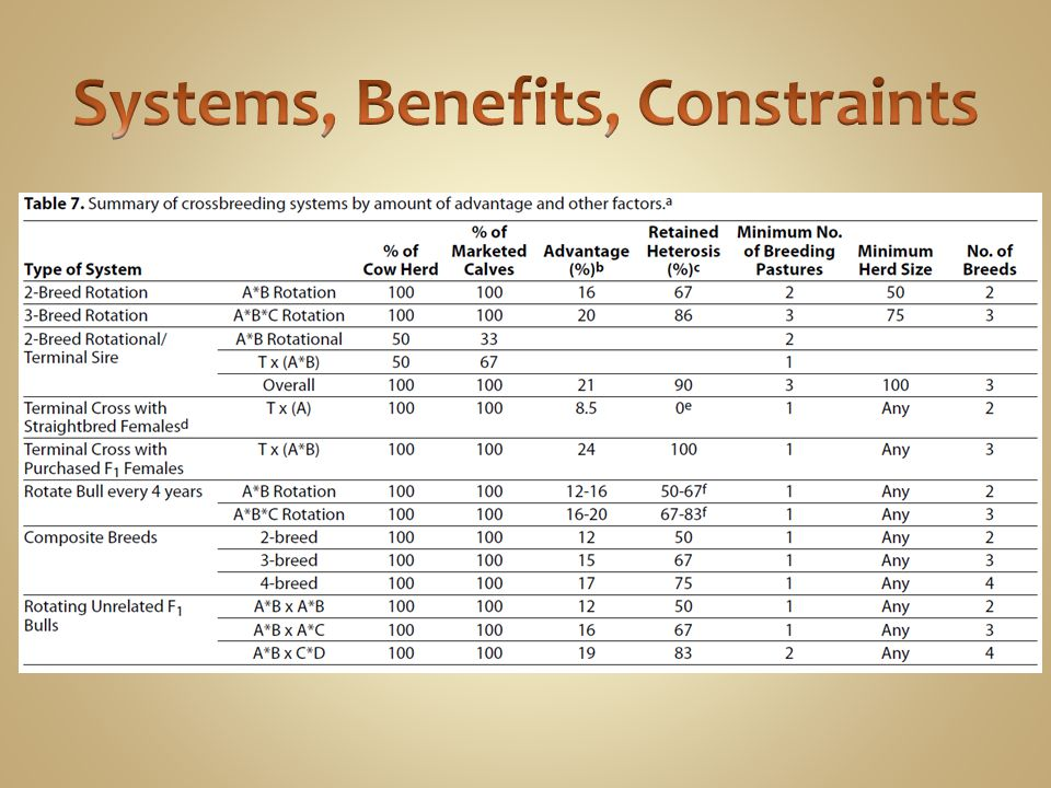 Systems, Benefits, Constraints