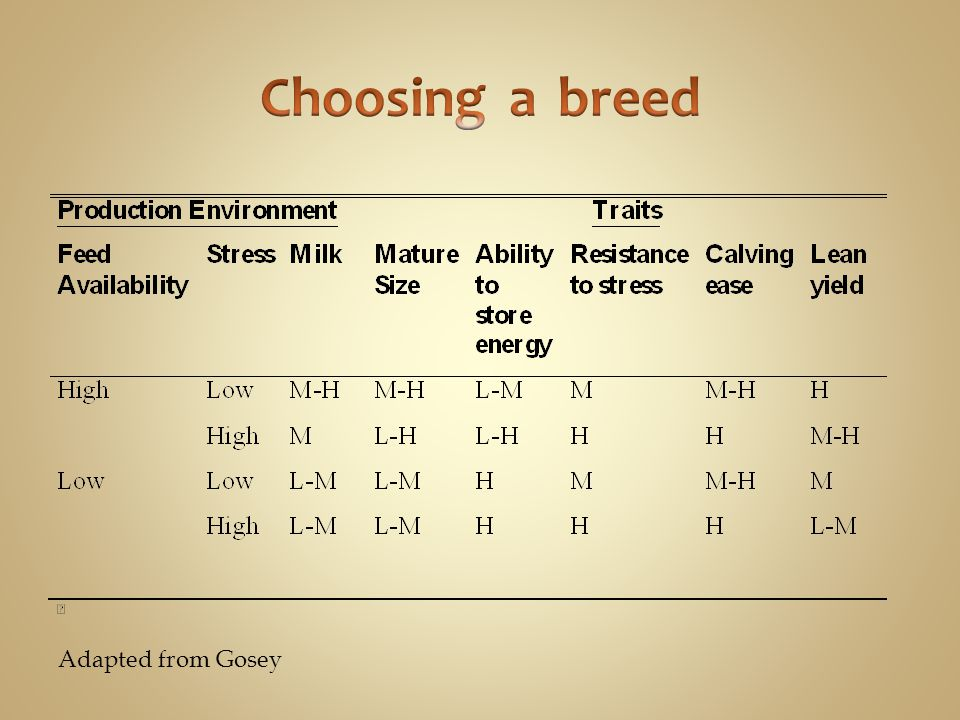 Choosing a breed Adapted from Gosey