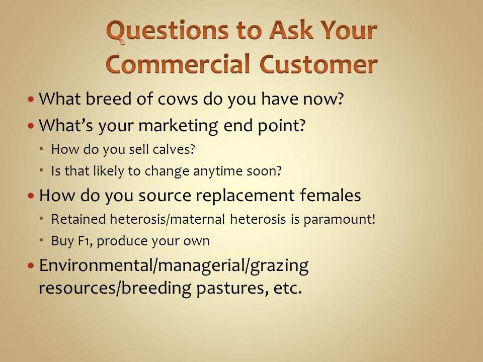 Questions to Ask Your Commercial Customer