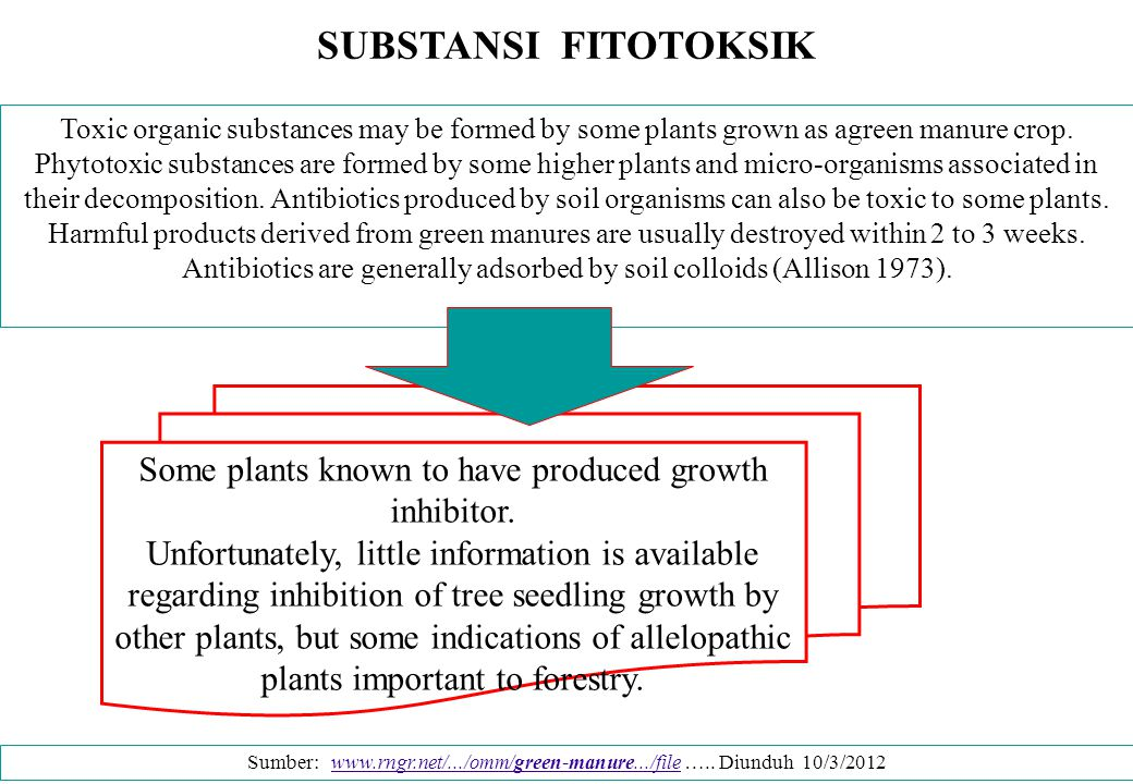 Some plants known to have produced growth inhibitor.